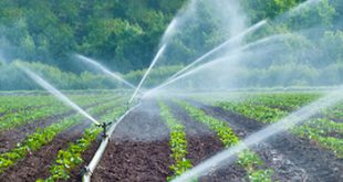 شیرالات کشاورزی