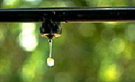 انواع تجهیزات آبیاری قطره ای مرغوب